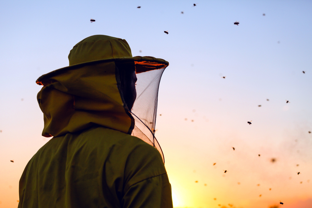 Former Inmates being trained as Beekeepers