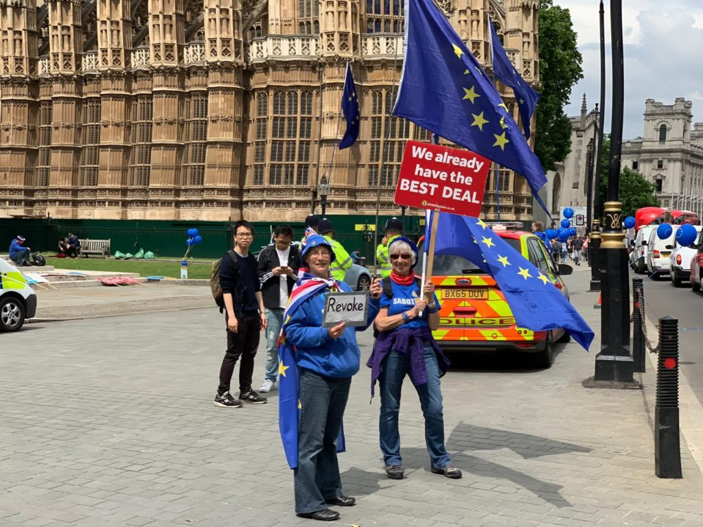 Brexit supporters' and opponents' individual protests continue in London (photo, video)