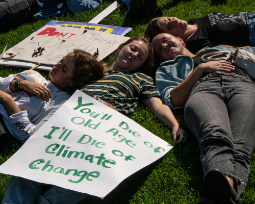Illinois Youth Climate Strike marchers join environmentalists in a protests