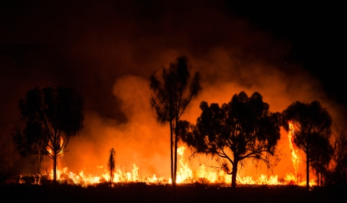 Wildfire started in New South Wales moves towards other Australian states