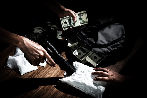 Court sentences a suburban gun dealer to 12 years in federal prison