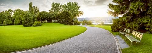 Carbondale Park District seeks public input regards strategic planning