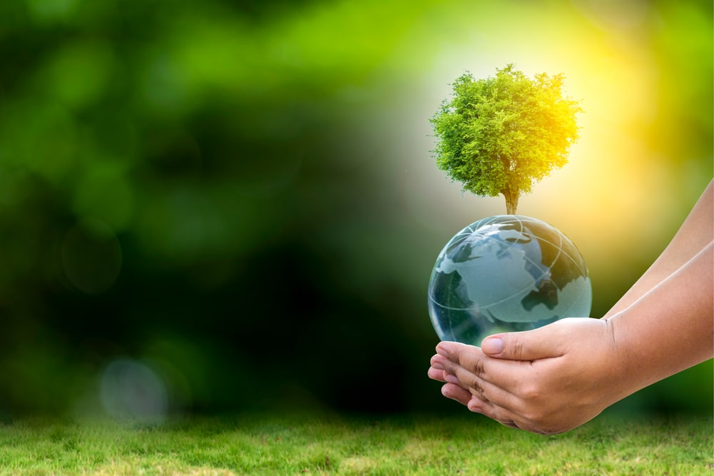 Earth Day Fair Set for Sunday, June 27 at Knoch Knolls Park