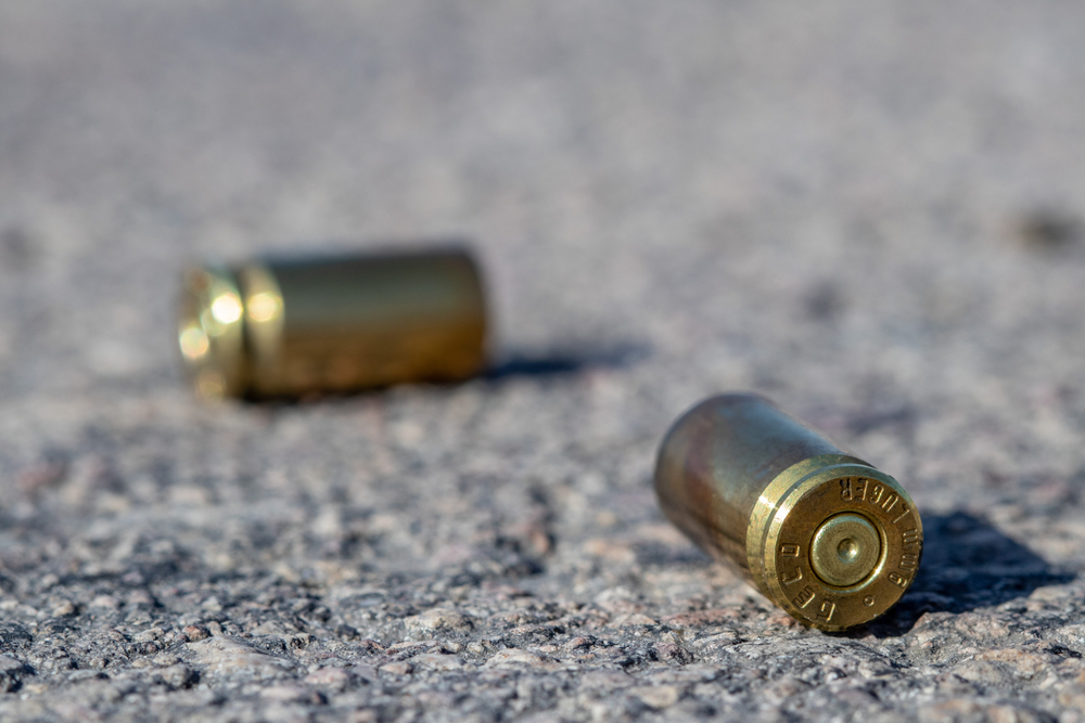 40 Shell Casings Found After Shooting on Nichols Rd in Unincorporated Arlington Heights